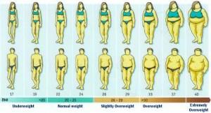 BMI definere overvægt hos mænd og kvinder