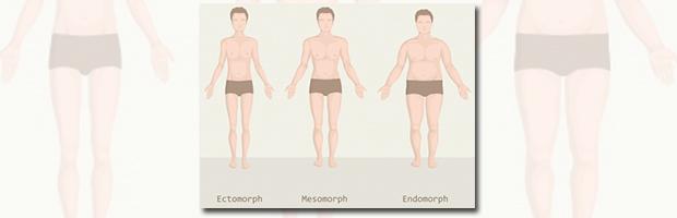 3 krops typer